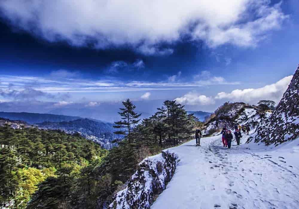 Sandakphu Travel Guide