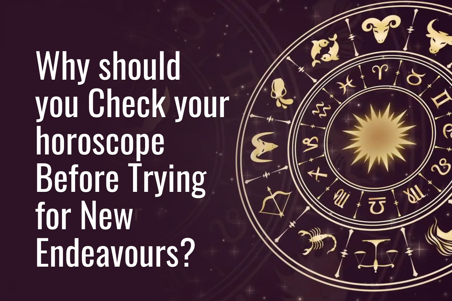 check your horoscope